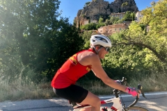 provence-pyrenees-hillside