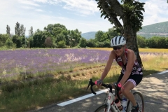 provence-pyrenees-lavender-ride
