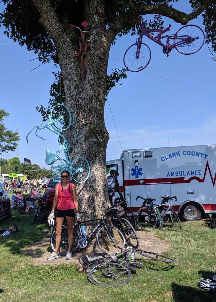 RAGBRAI - bicycles in a tree form an impropmtu sculpture in an Iowa town