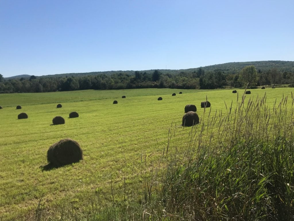 BikeMaine 2019 view of baled hay in Maine's fertile farm country in the Kennebec Valley